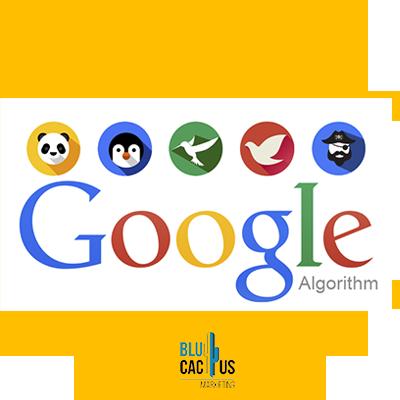 BluCactus - google