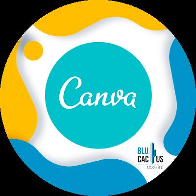 BluCactus - Community manager - canva