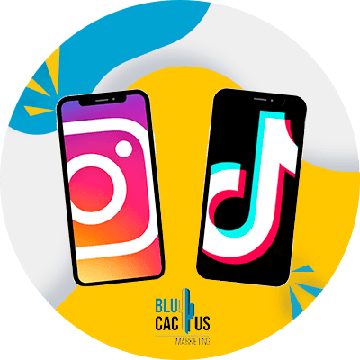 BluCactus - drive your sales through Social Media - social network