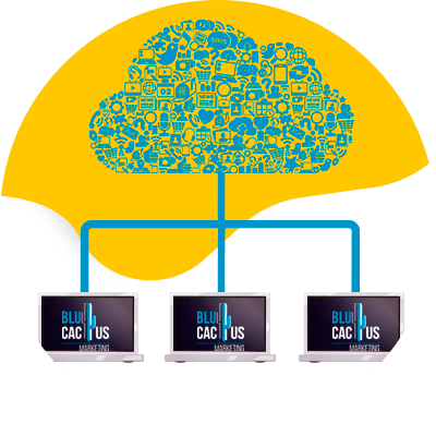BluCactus - web hosting - cloud hosting