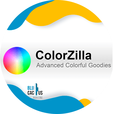 BluCactus - Community manager - colorzilla