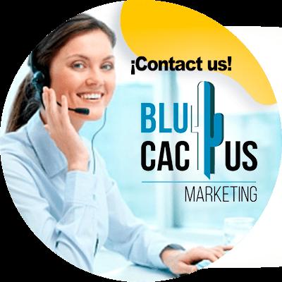 BluCactus - web hosting - contact us
