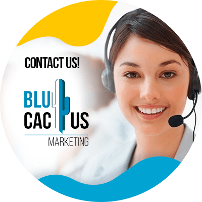 BluCactus - drive your sales through Social Media - contact us