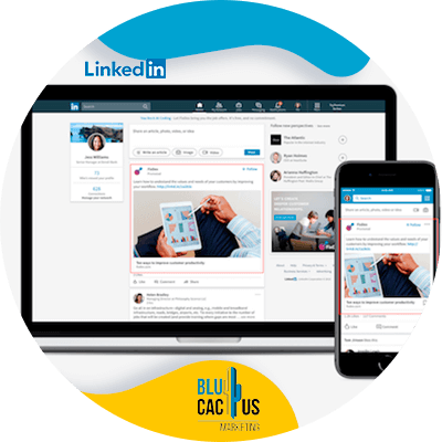 BluCactus - LinkedIn for Business - screen showing important information and data