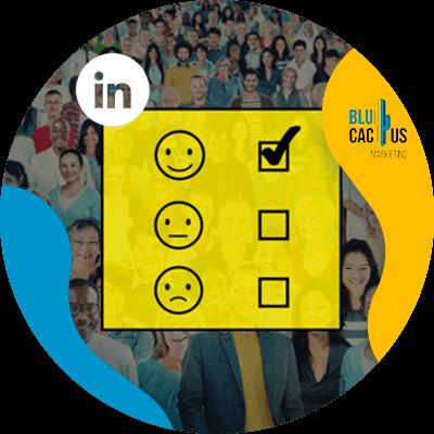 BluCactus - LinkedIn Business strategies - engagement