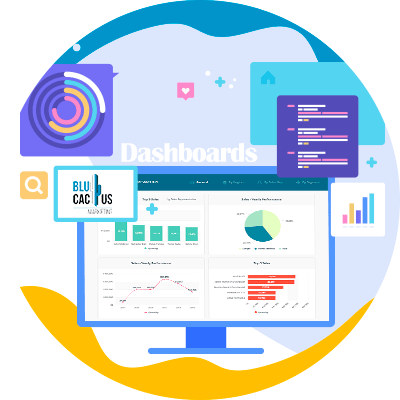 BluCactus - dashboard