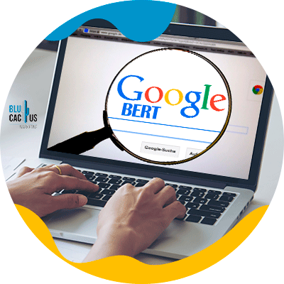 BluCactus - Google BERT: SEO's friend or foe? - person searching for this tool