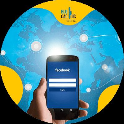 BluCactus - drive your sales through Social Media - facebook