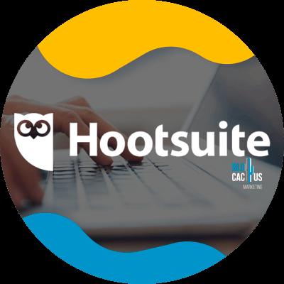 BluCactus- hootsuite