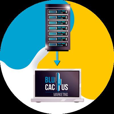 BluCactus - web hosting - hosting dedicated