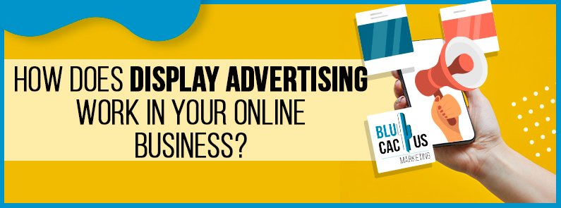 BluCactus - Display Advertising - title