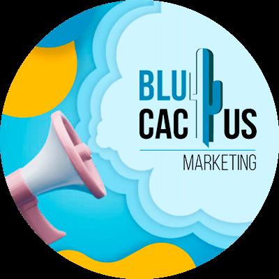 BluCactus - online business