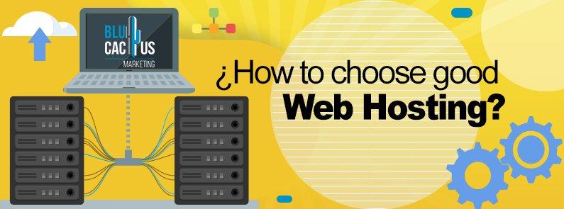 BluCactus - web hosting - title