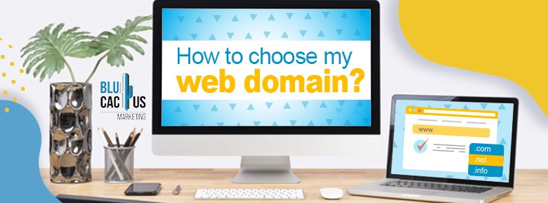 BluCactus - How to choose my Domain Name? - title