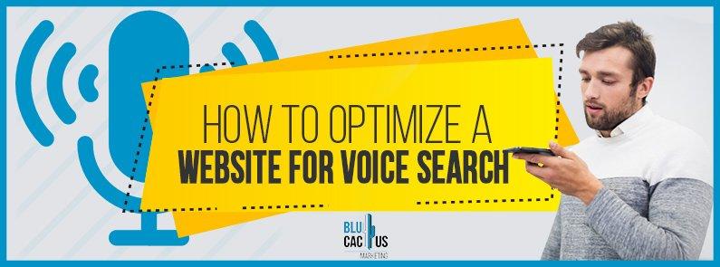 BluCactus - voice search - title