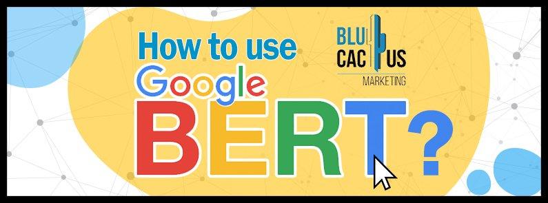 BluCactus - Google BERT: SEO's friend or foe? - title