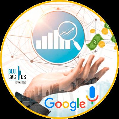 BluCactus - data volume