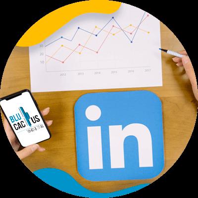 BluCactus - LinkedIn Business strategies - keys of strategy