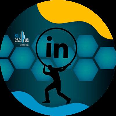 BluCactus - LinkedIn Business strategies - keys