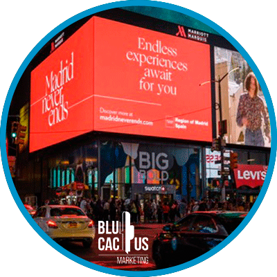 BluCactus - large formats