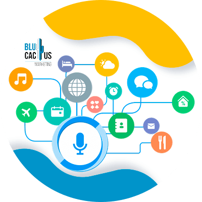 BluCactus - LinkedIn Business strategies - as a tool