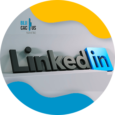 BluCactus - LinkedIn Business strategies -as a tool
