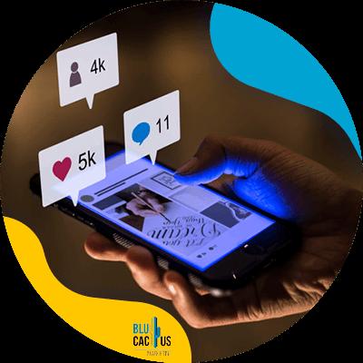 BluCactus - drive your sales through Social Media - quality publications