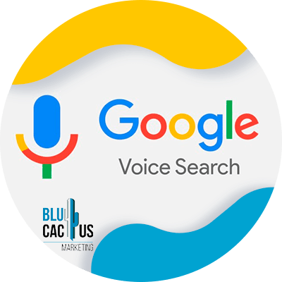 BluCactus - voice search - voice search meaning