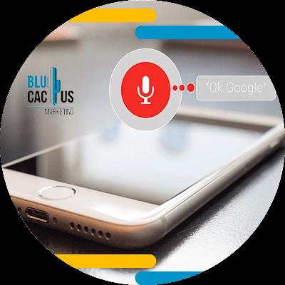 BluCactus - voice search - voice search