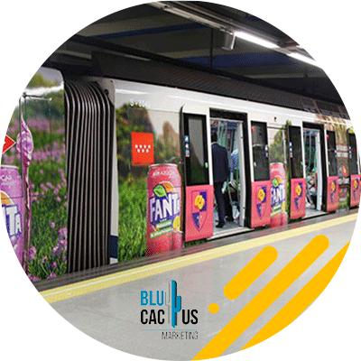 BluCactus -metro