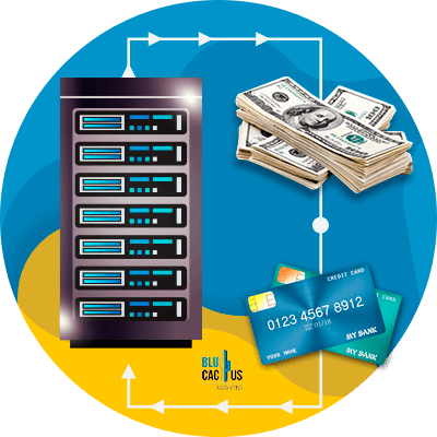 BluCactus - web hosting - money bank