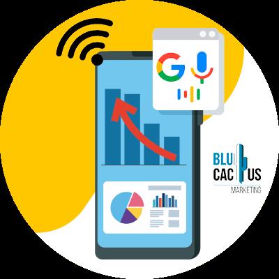 BluCactus - voice search - brands