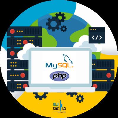 BluCactus - web hosting - mysql