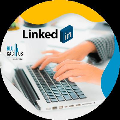 BluCactus - LinkedIn Business strategies - promotion