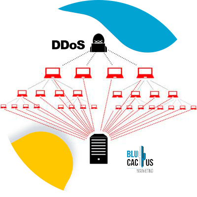 BluCactus - web hosting - security