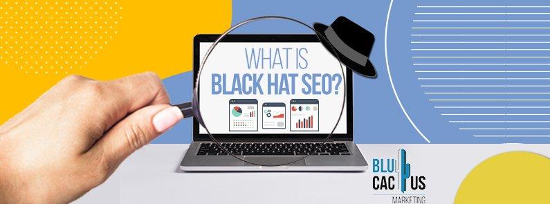 BluCactus - What is Black Hat SEO? - title