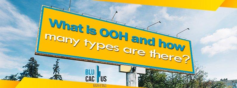 BluCactus - OOH advertising - title