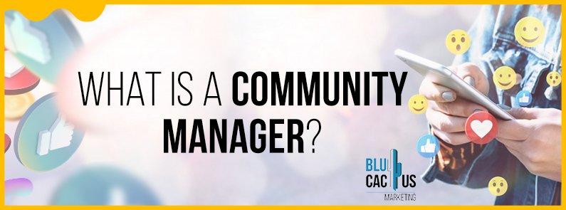 BluCactus - Community manager - title