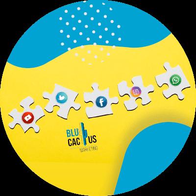 BluCactus - strategies for social media