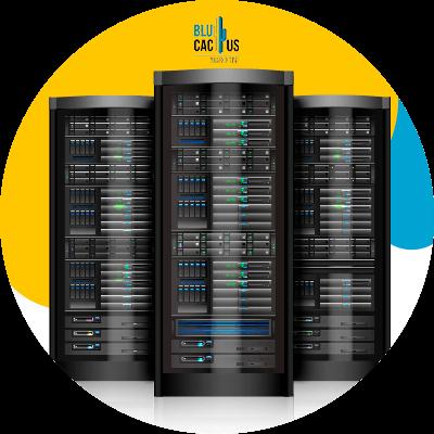 BluCactus -server