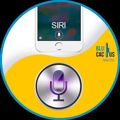 BluCactus - voice search - siri