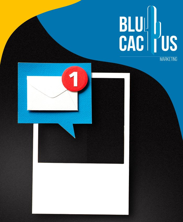 BluCactus A comprehensive overview of your strategy