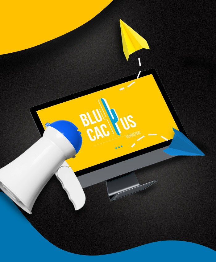 BluCactus Custom Email Marketing Solutions