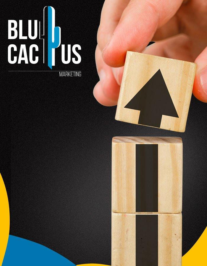 BluCactus Data driven social media marketing campaigns Social Media Marketing Agency