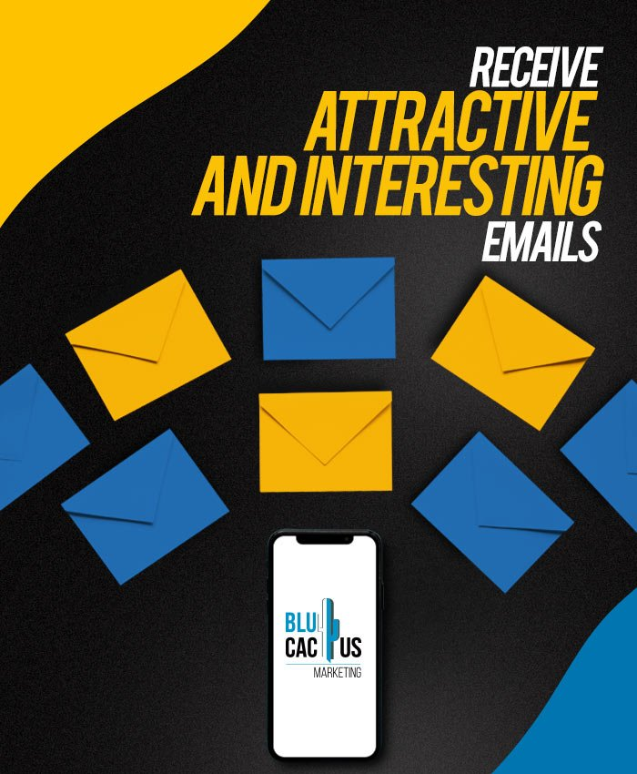 BluCactus Email Marketing Company for Business