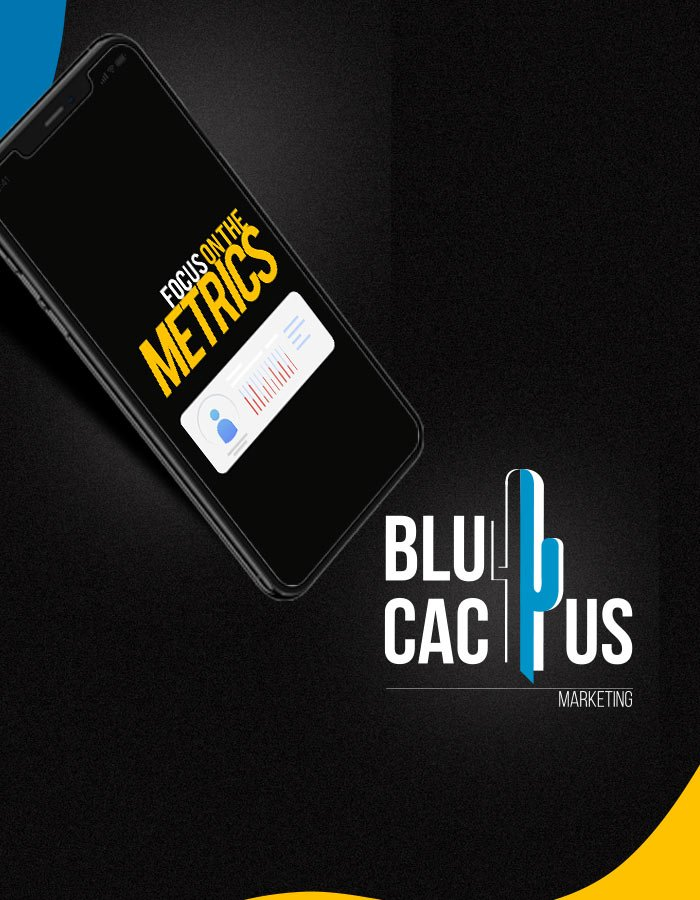 BluCactus Establish your most important metrics