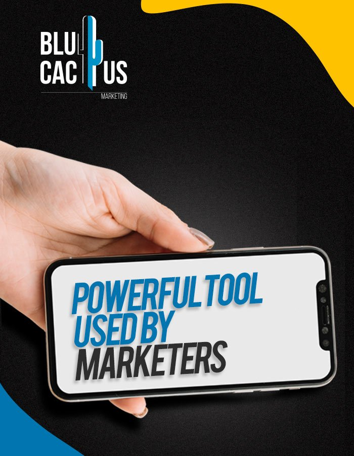 BluCactus Social Media Management Agency