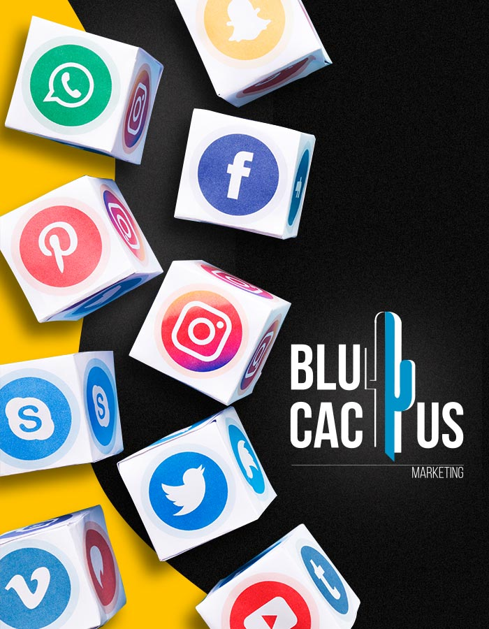 BluCactus Social Media Marketing Success Specific strategies for highly targeted audiences Social Media Marketing Agency