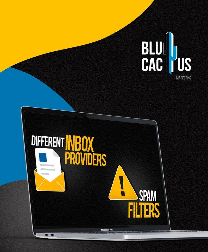 BluCactus Test Emails for Better Results by your Email Marketing Company