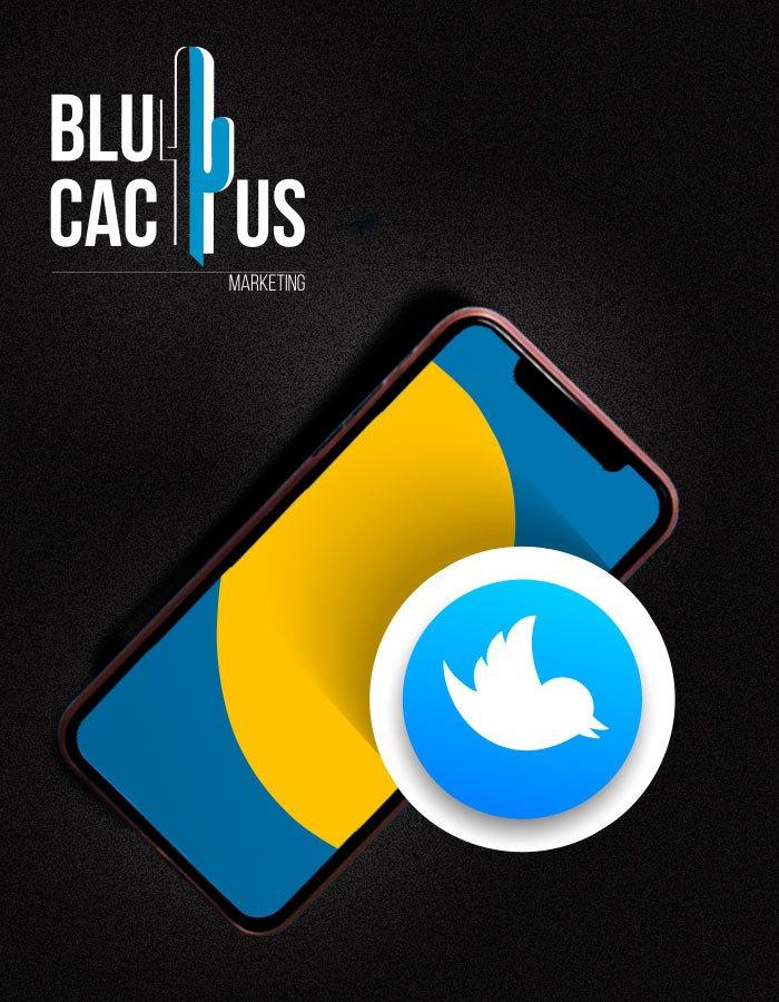 BluCactus Twitter Marketing Social Media Marketing Agency